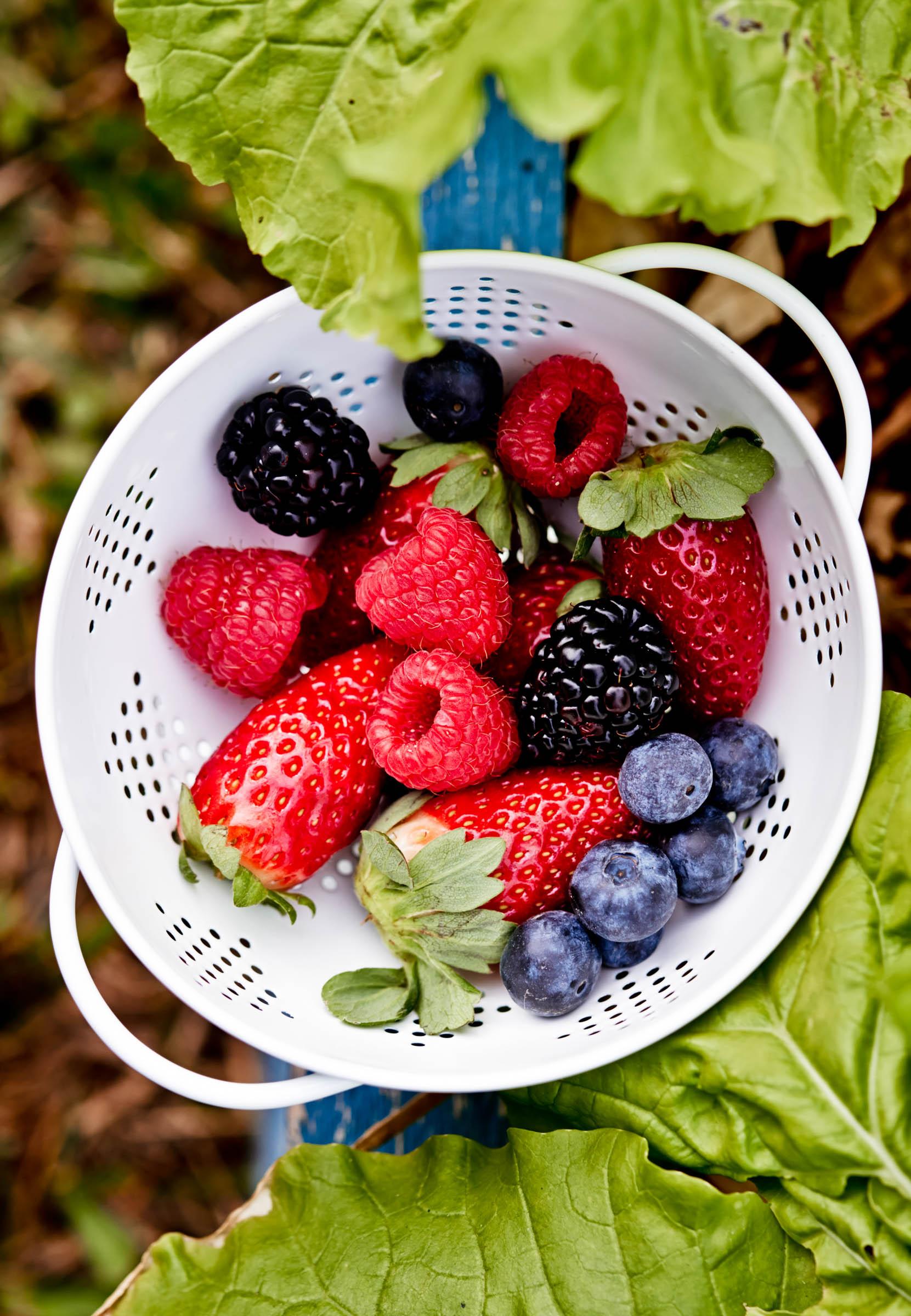 fresh blueberries, strawberries and blackberries